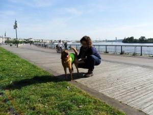 Cityzen Pets Dressage et éducation canine