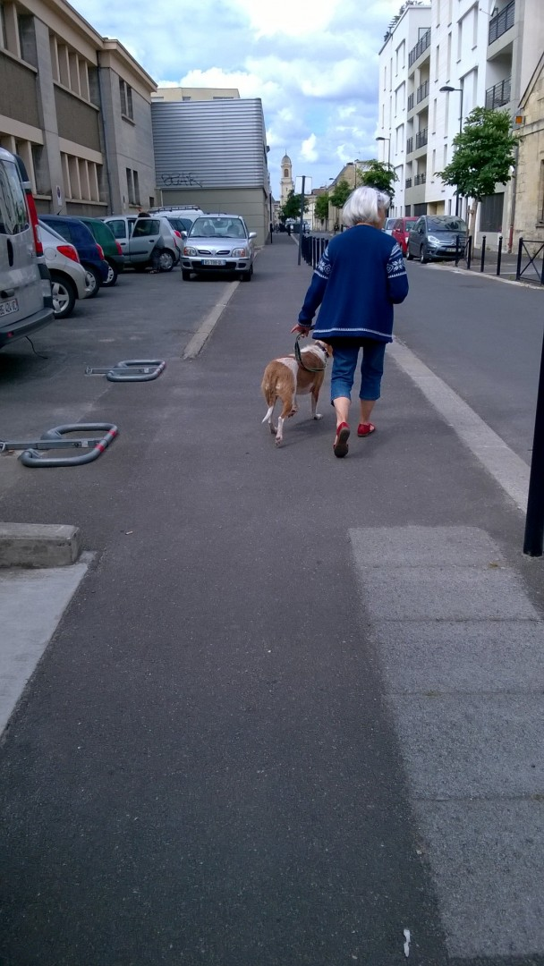 Dressage canin et éducation canine sur Bordeaux et la CUB